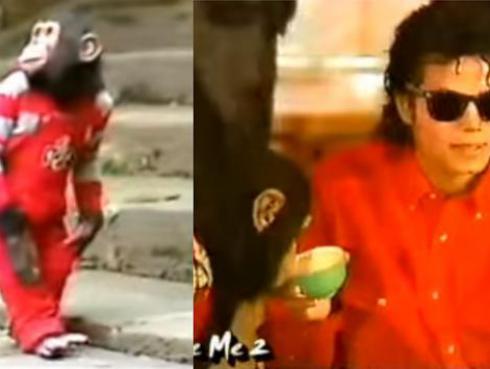 ¡Lanzarán película animada de 'Bubbles', el chimpancé de Michael Jackson!