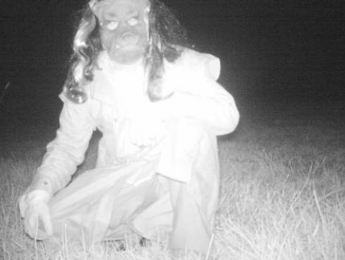 Buscaban atrapar a un puma usando una cámara oculta, pero encontraron esto