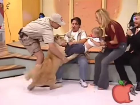 ¡Niña es atacada en vivo por leona cachorra y no creerás la reacción de la entrenadora! [VIDEO]