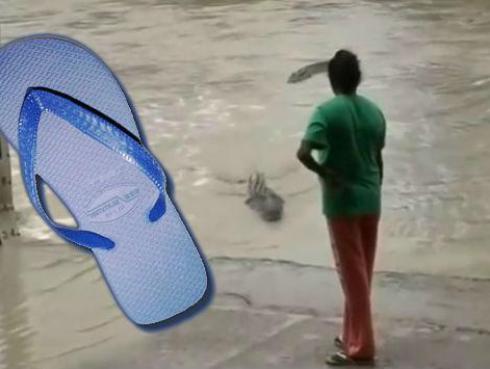 ¡Mujer espantó a un inmenso cocodrilo solo con su sandalia! [VIDEO]