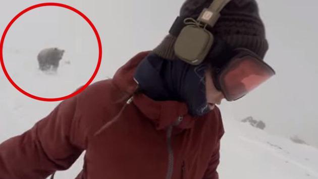 ¡Mujer casi es atacada por un oso y no lo notó! [VIDEO]