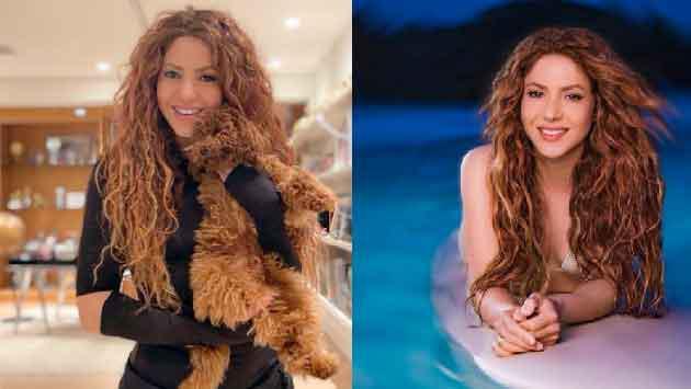 ¿Shakira estaría embarazada?