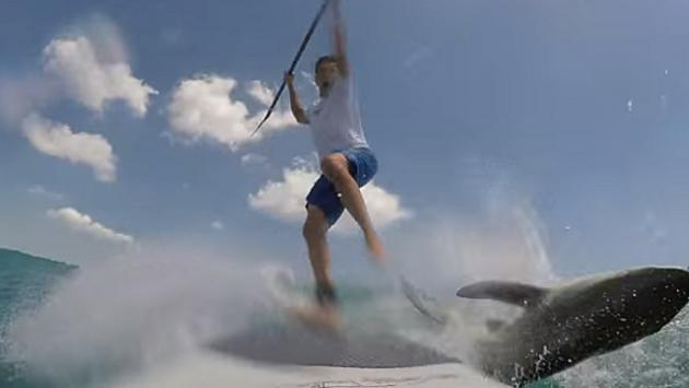 ¡Tiburón derribó a surfista en pleno entrenamiento!